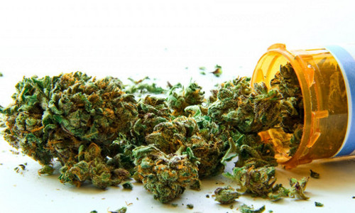 cannabis-comme-médicament